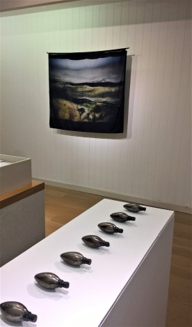 Dull, installatin view (Ashleigh Harrold, Fiona Macphee)