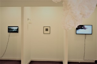 Dull, installation view (David Green, Nicola Lee, Robert Luzar, Beth Biddiss)