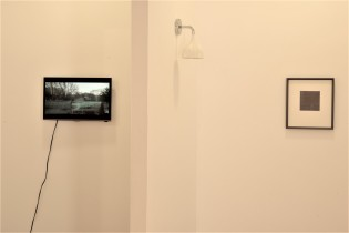 Dull, installation view (David Green, Nicola Lee)