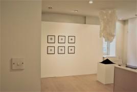 Dull, installation view (Michelle Ohlson, Bea Haines, Beth Biddiss, Ashleigh Harrold)